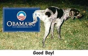 Good Bodog peeing on obama for president sign