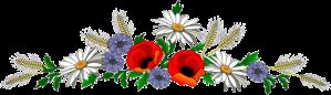 bright flowers divider