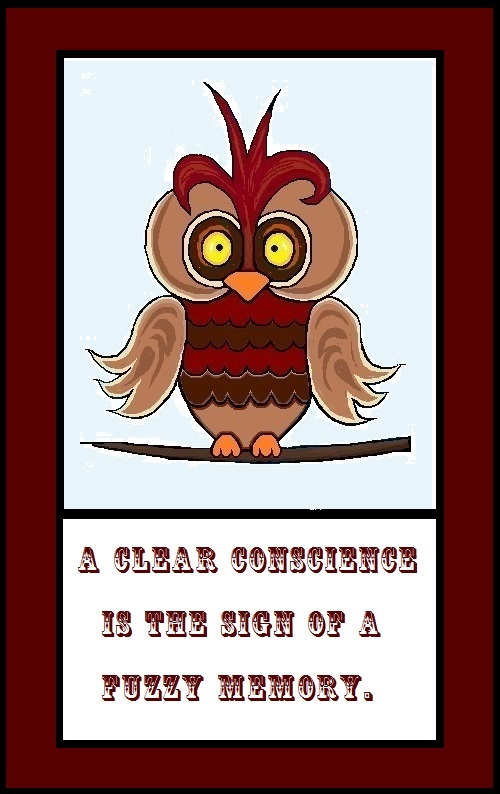 photo of owl with quote