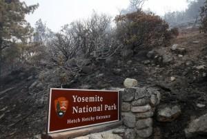 Yosemite Park Sign