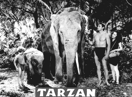 Tarzan with animals