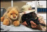 military humor10